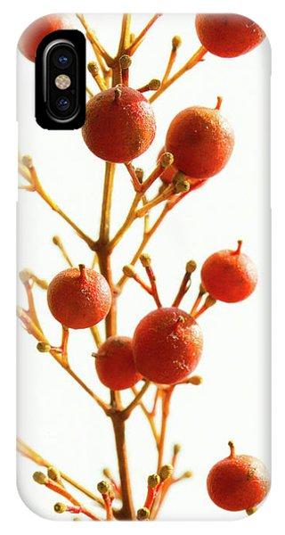 Brazilian Pepper 0482 IPhone Case
