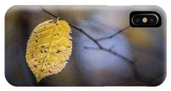 Bright Fall Leaf 1 IPhone Case