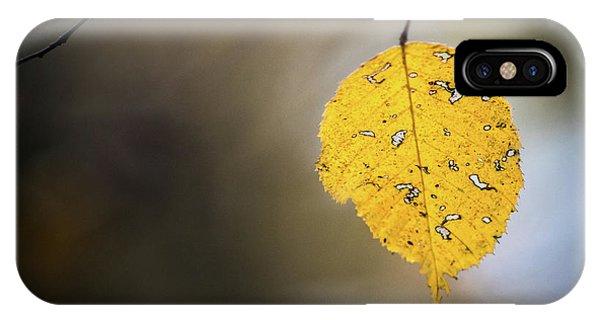 Bright Fall Leaf 7 IPhone Case