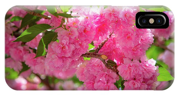 Bright Pink Blossoms IPhone Case