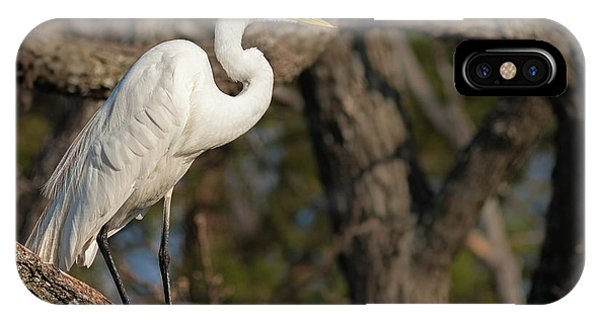 Bright White Heron IPhone Case
