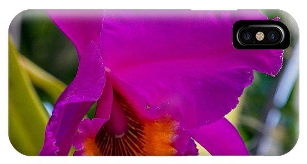 Brilliant Orchid IPhone Case