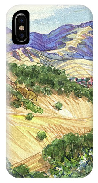 IPhone Case featuring the painting Briones From Mount Diablo Foothills by Judith Kunzle