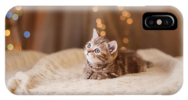 Adorable iPhone Case - British Kitten, Christmas And New Year by Dezy