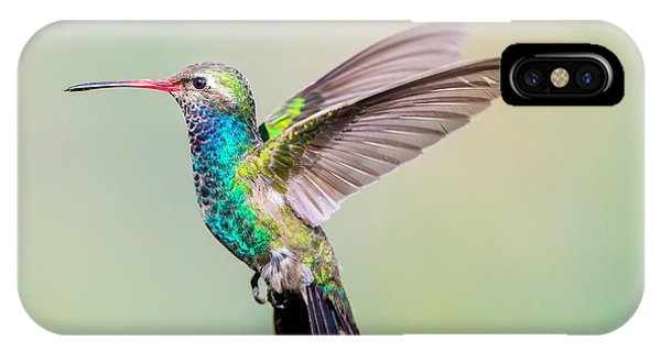 Art And Craft iPhone Case - Broad Billed Hummingbird. Using by Glass And Nature