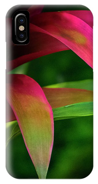Bromelia IPhone Case
