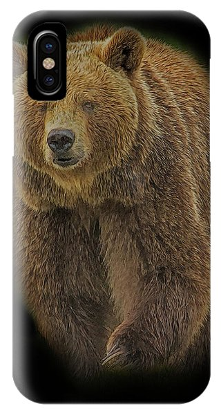 Brown Bear In Darkness IPhone Case