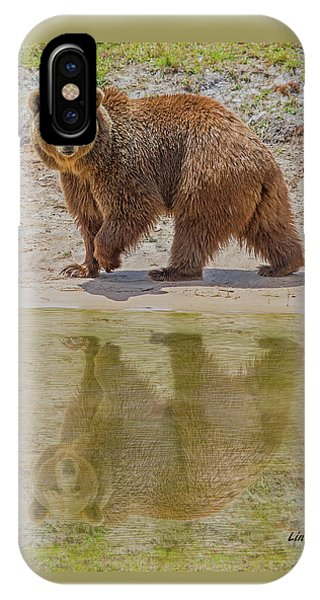 Brown Bear Reflection IPhone Case