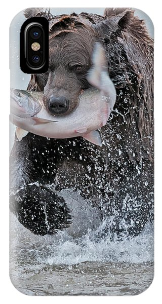 Bear Creek iPhone Case - Brown Bear With Salmon Catch by Gary Langley