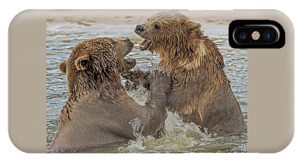 Brown Bears Fighting IPhone Case
