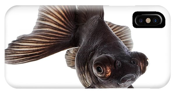 Small iPhone Case - Brown Goldfish Isolated On White by Vangert