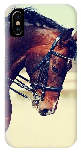 Purebred iPhone Case - Brown Stallion. Portrait Of A Sports by Elya Vatel