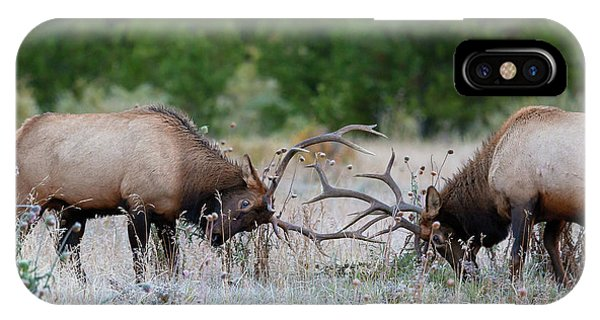 IPhone Case featuring the photograph Bull Elk Battle Rocky Mountain National Park by Nathan Bush