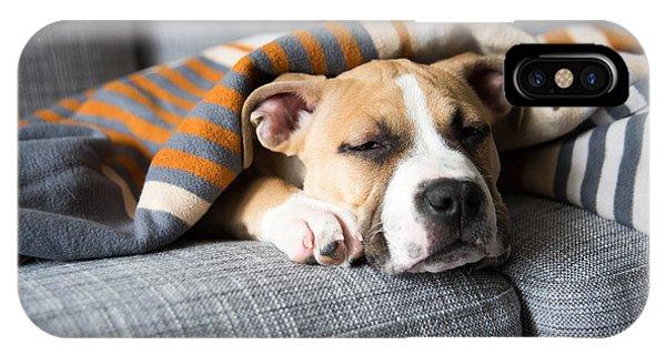 Adorable iPhone Case - Bulldog Mix Puppy Sleeping On Gray Sofa by Anna Hoychuk
