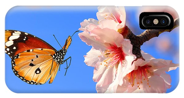 Bouquet iPhone Case - Butterfly And Pink Almond Tree Blossom by Protasov An