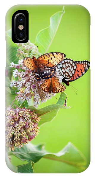 IPhone Case featuring the photograph Butterfly Buffet II by Jeff Phillippi