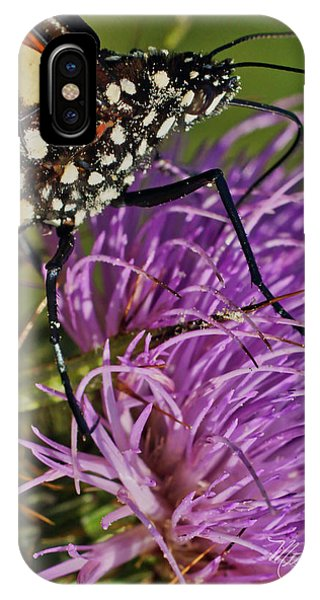 Butterfly Closeup Vertical IPhone Case