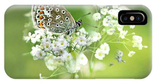 Butterfly On Babybreath IPhone Case