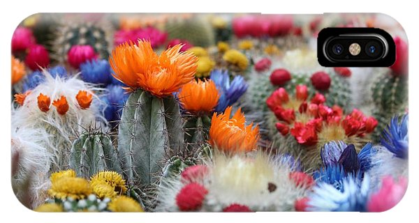 Cacti Flowers IPhone Case