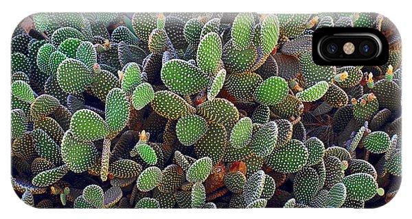 Botany iPhone Case - Cactus by Celig