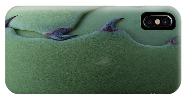 Botany iPhone Case - Cactus Leaf Pattern by Emily Goodwin