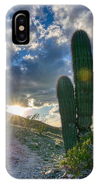 Cactus Portrait  IPhone Case