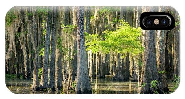 Caddo Swamp 1 IPhone Case