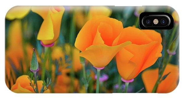 California Poppies Lake Elsinore IPhone Case