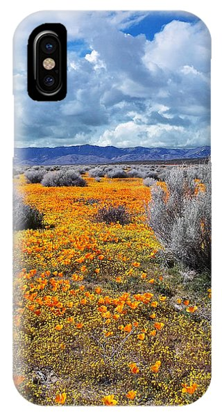 California Poppy Patch IPhone Case
