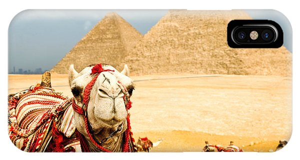Egyptian iPhone X Case - Camel  In Egypt by Nutsiam