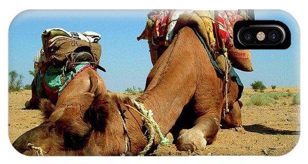 Egyptian iPhone X Case - Camel Sleeping During A Desert Safari by Paul Prescott