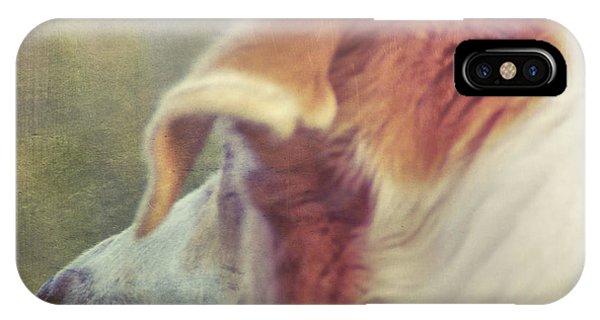 Canine Salvation IPhone Case
