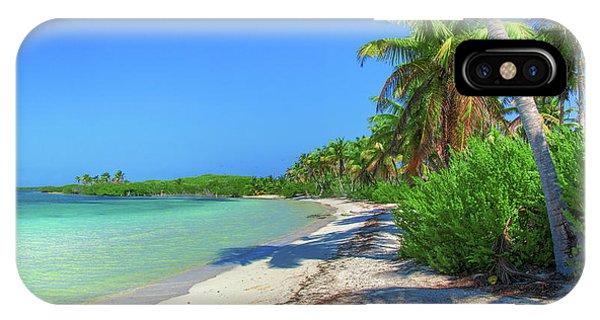 Caribbean Palm Beach IPhone Case