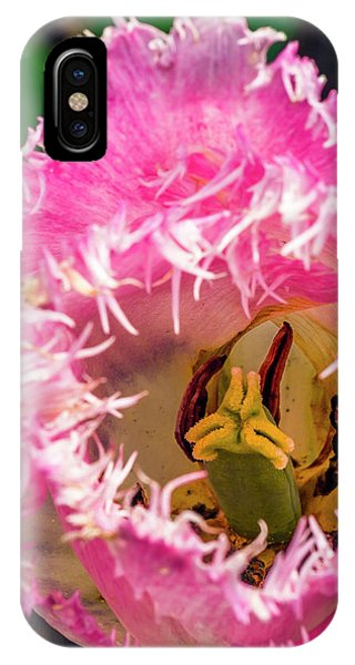 Carnivorous? IPhone Case