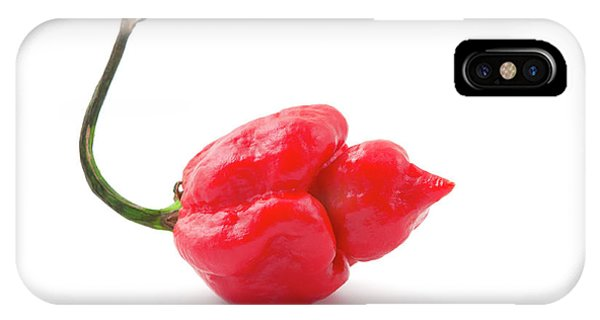 Cultivar iPhone Case - Carolina Reaper by Fabrizio Troiani