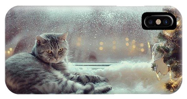 Purebred iPhone Case - Cat In The Winter Window by Alekuwka