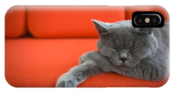 Adorable iPhone Case - Cat Relaxing On The Couch by Ac Manley
