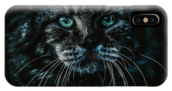 IPhone Case featuring the photograph Cat by Rob D