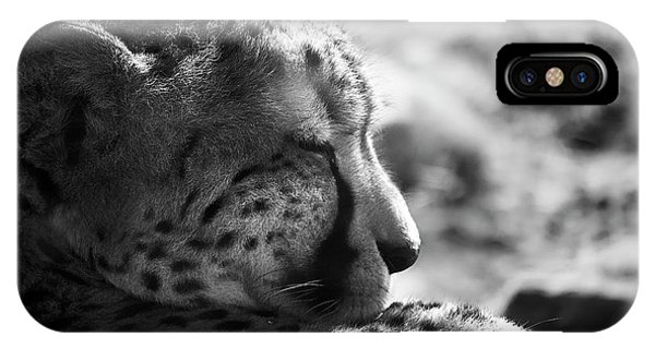 IPhone Case featuring the photograph Catnap by Whitney Goodey