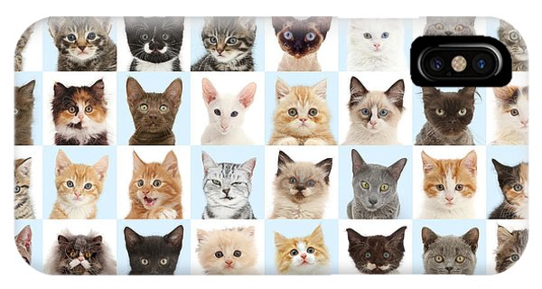 IPhone Case featuring the photograph Cats Or Chess by Warren Photographic