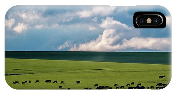IPhone Case featuring the photograph Cattle On The Flint Hills Prairie by Jeff Phillippi