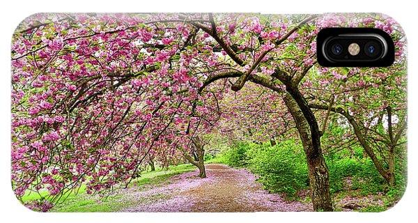 Central Park Cherry Blossoms IPhone Case