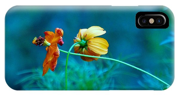 IPhone Case featuring the photograph Chance Meeting by Rosanne Licciardi