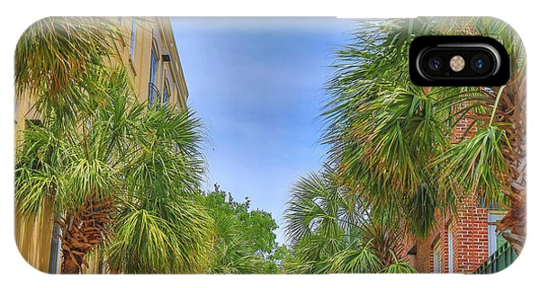 Battery D iPhone Case - Charleston Palmetto Trees by Dan Sproul