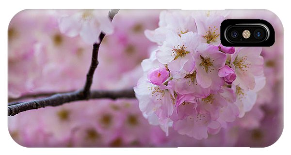 Cherry Blossom 8624 IPhone Case