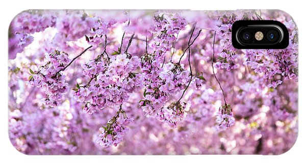 Blossoms iPhone Case - Cherry Blossom Flowers by Nicklas Gustafsson