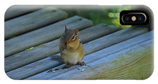 IPhone Case featuring the photograph Chipmunk Eating Seeds by Angela Murdock
