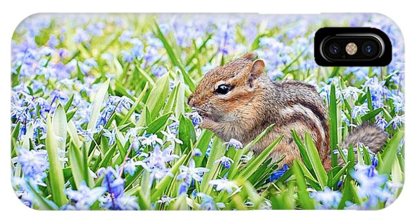 Chipmunk On Flowers IPhone Case