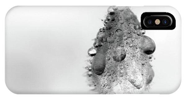 Clematis Bud In Rain IPhone Case