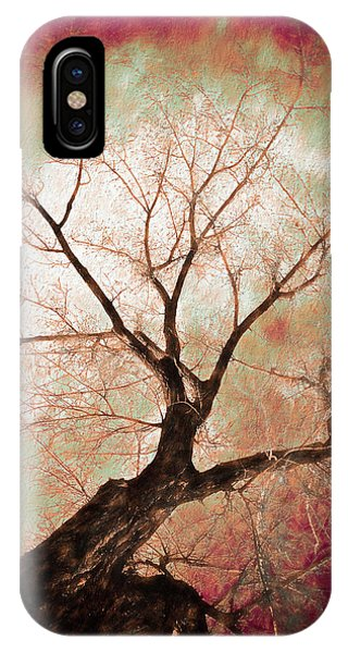 IPhone Case featuring the photograph Climbing Red Fiery by James BO Insogna